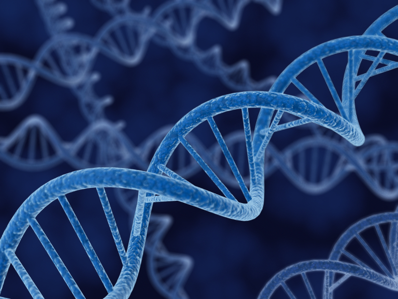 DNA Services